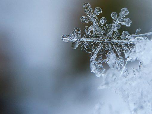 Unser Winterprogramm